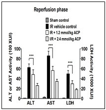 Text Box:    Fig. 2 shows that 2-ACP provides dose-dependent hepatoprotection in a rat model of liver ischemia/reperfusion injury.