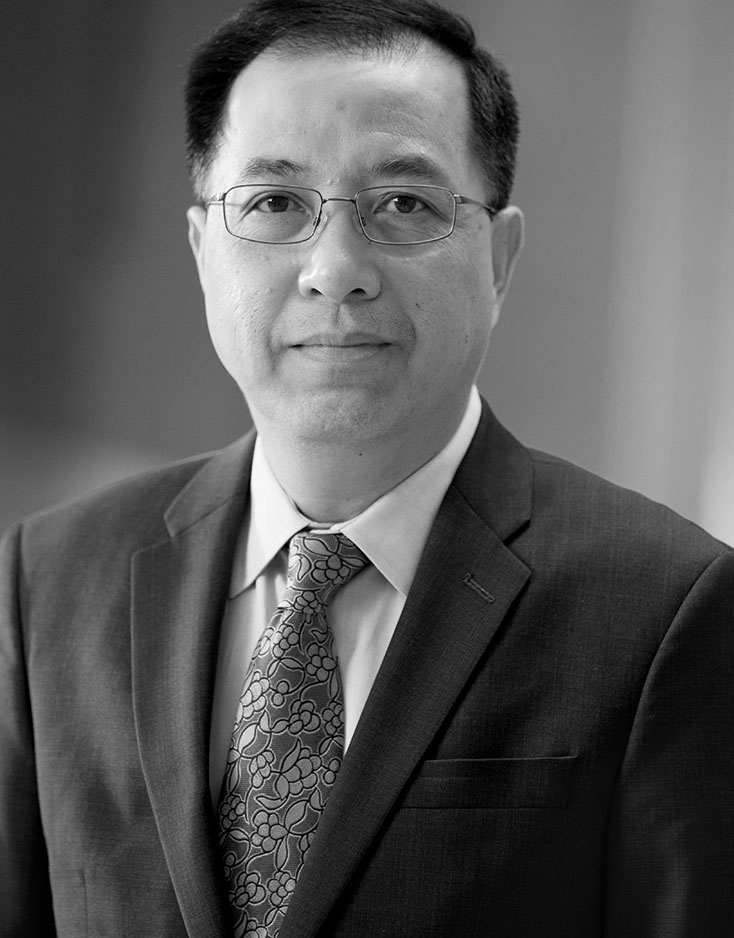 Bang H. Hoang, MD - Research Director, Orthopedic Surgery,  Professor, Orthopedic Surgery - Orthopedic Oncology
